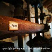 visita-almassera-dels-molto-03