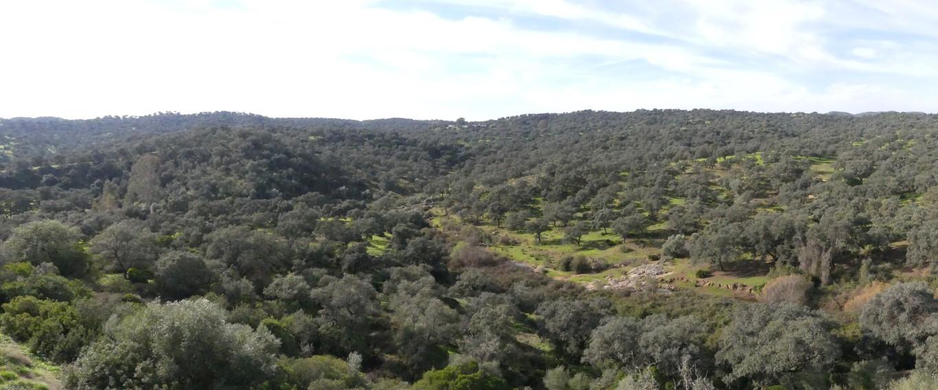 parque-natural-de-la-sierra-norte-de-sevilla-arqueotrip
