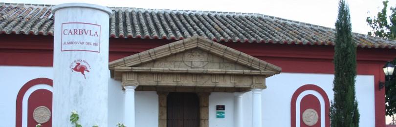 Visita Portus Carbula 05 ArqueoTrip