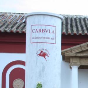 Visita Portus de Carbula 02 ArqueoTrip