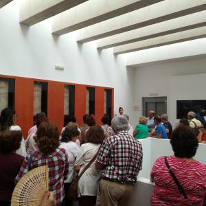 Visitas Guiadas Colección Museográfica del Mosaico Romano 01