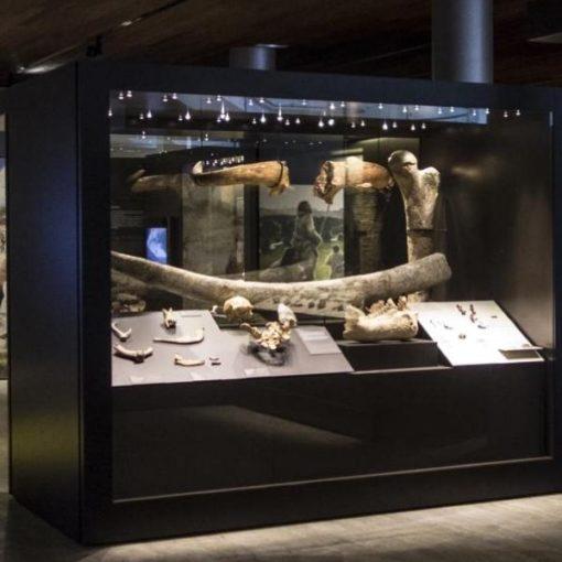 La Prehistoria ArqueoTrip 02