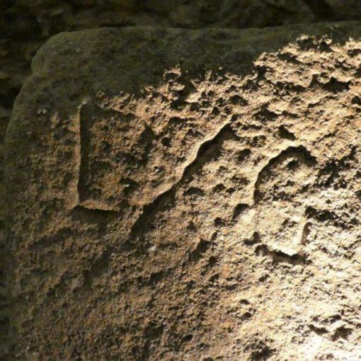 El Enigma de los Museos 03 ArqueoTrip
