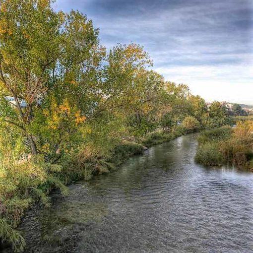 Río Turia en Riba-roja