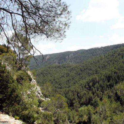 Paisaje de montaña de Bicorp
