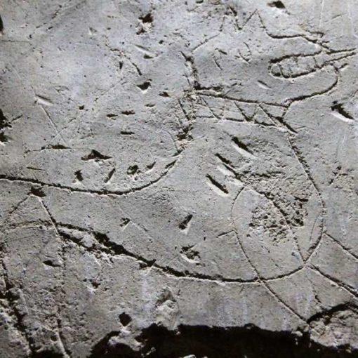 Graffiti de un felino en el Castillo de Cadrete