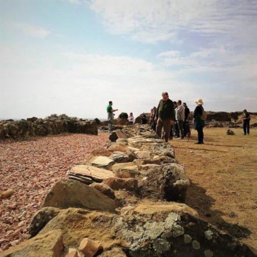 Grupo de personas visitando el yacimiento arqueológico de Tejada La Vieja