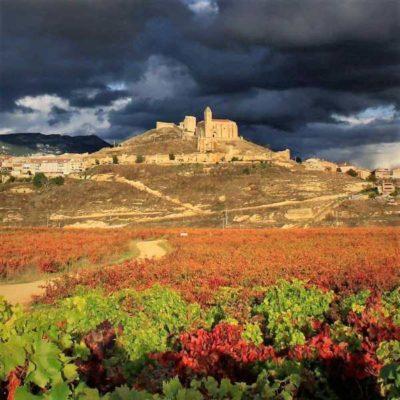 Viñedo y vista general del Castillo de San Vicente de la Sonsierra