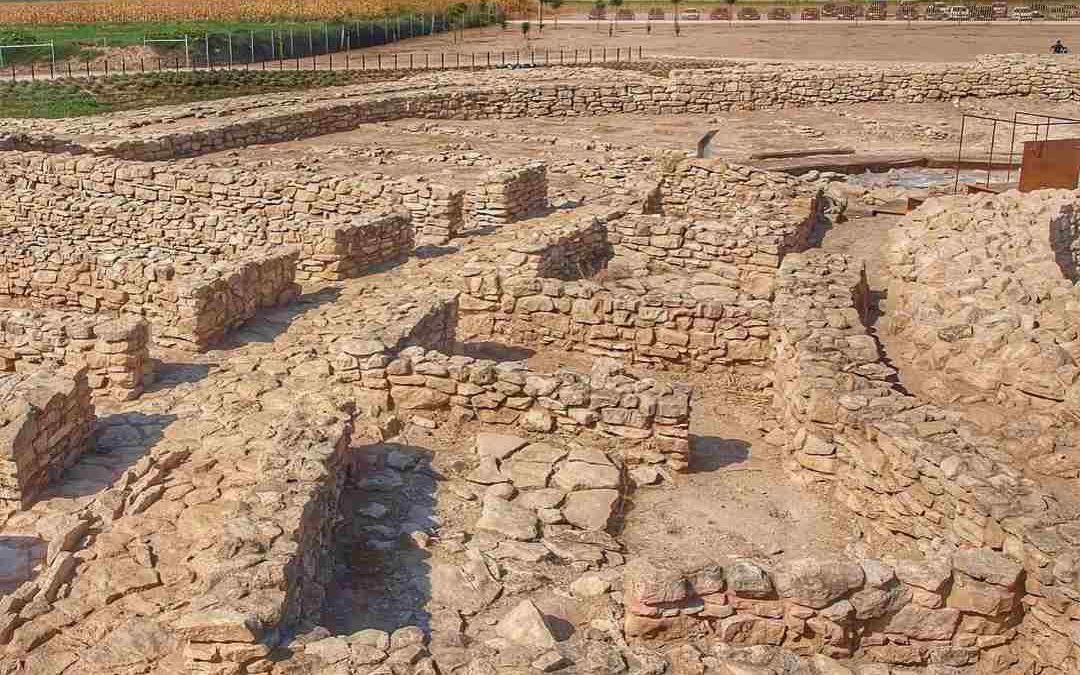 ¿Cómo visitar el yacimiento arqueológico de Els Vilars de Arbeca? Guía útil.