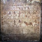 El Museo Arqueológico Nacional (MAN) celebra 50 años de la primera excavación española en Heracleópolis Magna