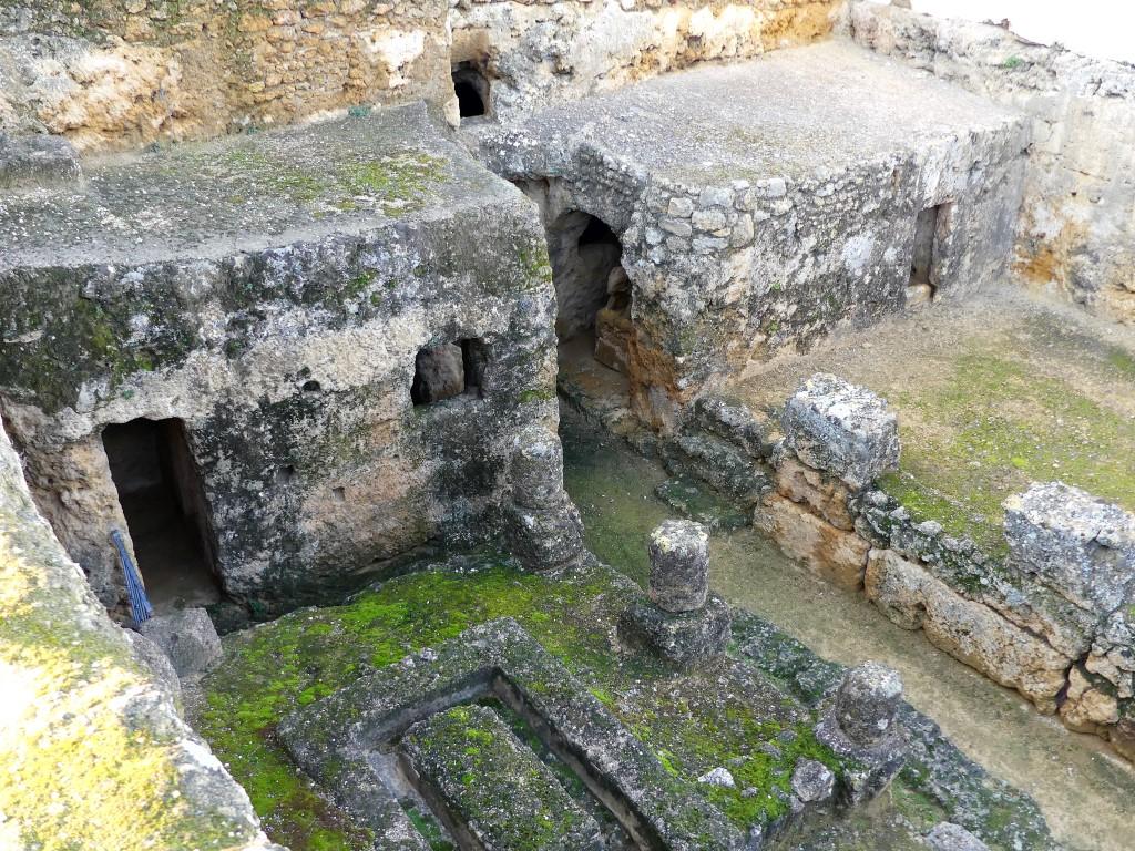 Carmona Arte, historia y arqueología ArqueoTrip 17