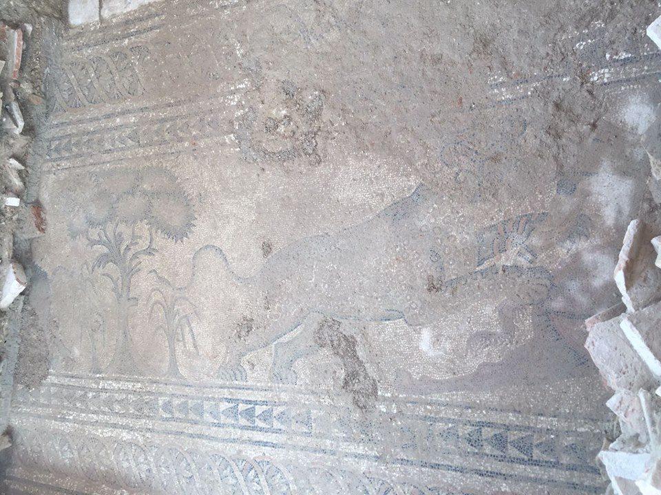 Villa Romana de Salar guepardo5