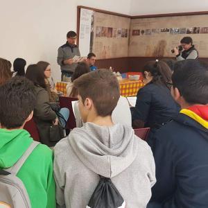 sitas Guiadas Colección Museográfica del Mosaico Romano 03
