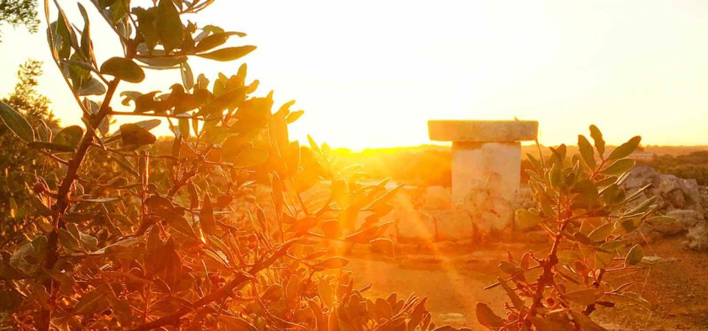 nocturna en Torralba d'en Salort 00 ArqueoTrip