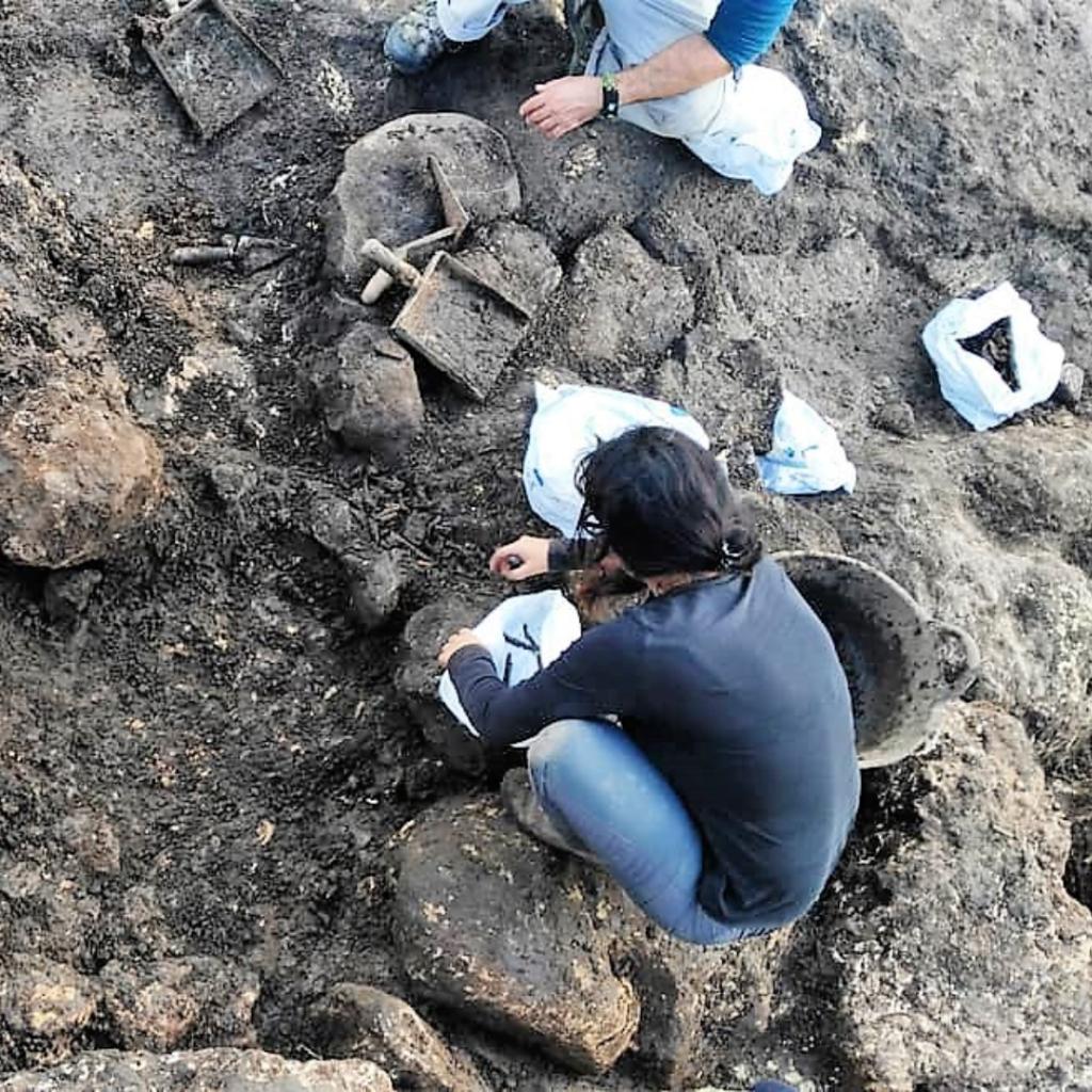 Poblado talayótico de Torralba d'en Salort, intervención arqueológica