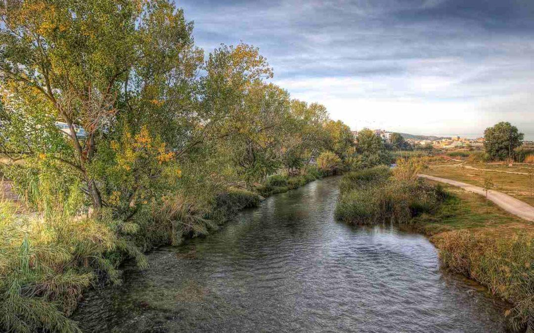 Márgenes fluviales del río Turia