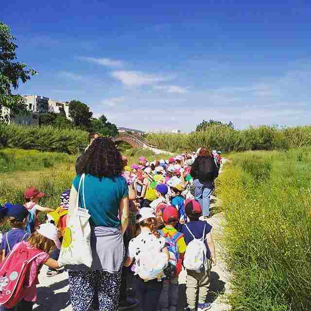 Visita escolar en Riba-roja de Turia