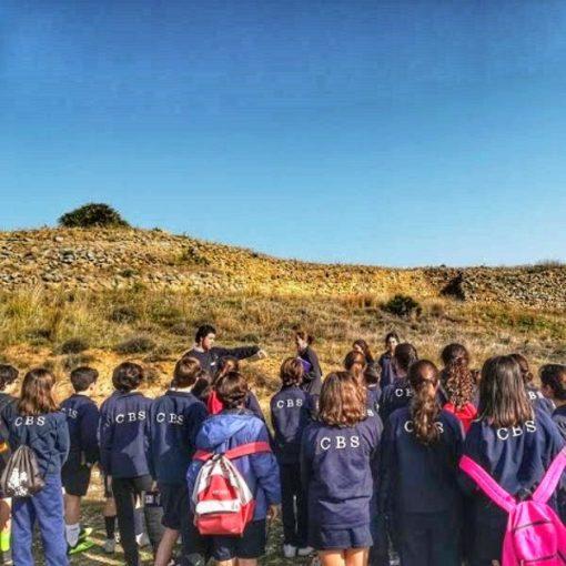 Visita guiada para grupos la yacimcimiento de Tejada la Vieja